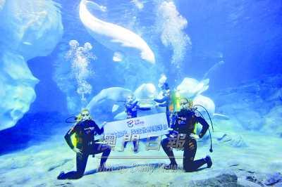 横琴长隆吁保护海洋生态图片